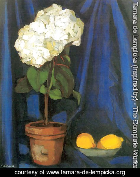 Tamara de Lempicka (inspired by) - Bouquet of Hortensias and Lemon, c.1922